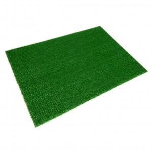 11-SPRING GREEN ASTROTURF - ZIEL. TRAWIASTY