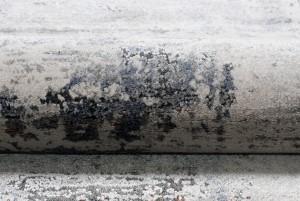 Dywan ekskluzywny S776B FEYRUZ FFS kremowy